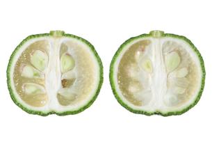 青柚子断面の写真素材 [FYI02074329]
