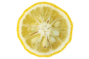 柚子断面の写真素材 [FYI02074428]