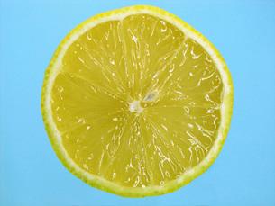 檸檬の断面の写真素材 [FYI02074434]