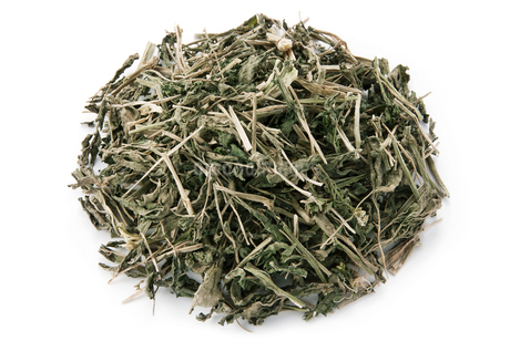 クレソン茶の写真素材 [FYI02074611]
