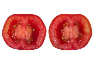 トマトベリー断面の写真素材 [FYI02074614]