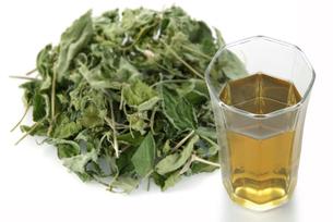 ハコベ茶の写真素材 [FYI02074615]