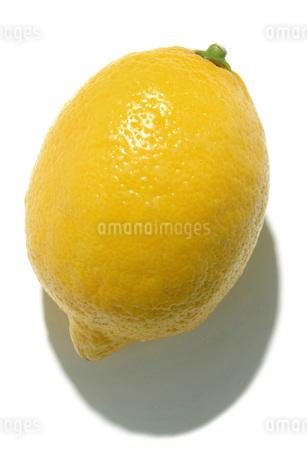 レモンの写真素材 [FYI02074809]
