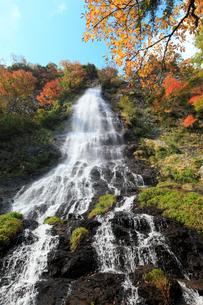 養父市天滝の紅葉の写真素材 [FYI02074832]