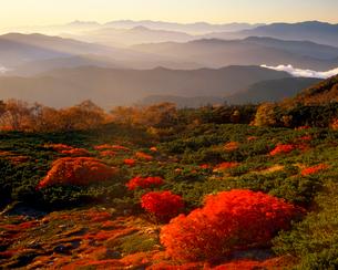 乗鞍岳位ヶ原の紅葉と南アルプスの山並の写真素材 [FYI02074891]