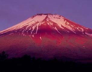 北富士演習場梨ヶ原からの朝焼け富士山の写真素材 [FYI02074924]