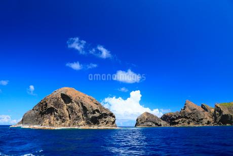 小笠原諸島母島列島 姪島の四本岩の写真素材 [FYI02074929]