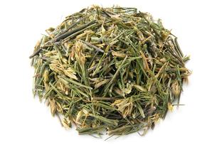 センブリ茶の写真素材 [FYI02075096]