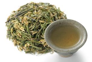 センブリ茶の写真素材 [FYI02075136]