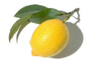 レモンの写真素材 [FYI02075142]