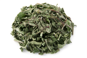 タンポポ茶の写真素材 [FYI02075279]