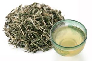 クレソン茶の写真素材 [FYI02075449]