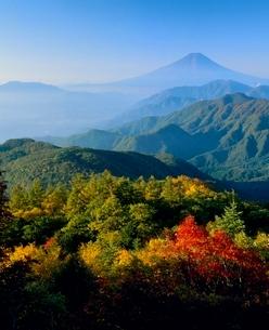 雁ヶ腹摺山の紅葉と富士山の写真素材 [FYI02075527]