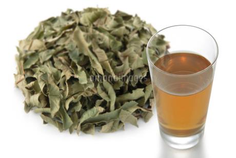 グァバ茶の写真素材 [FYI02075593]