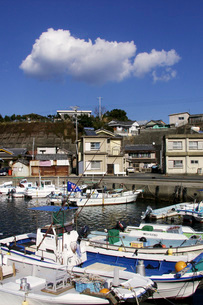 小さな漁港の写真素材 [FYI02075627]