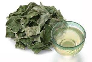 柿の葉茶の写真素材 [FYI02075661]