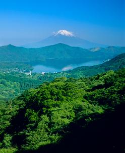 箱根大観山より新緑の芦ノ湖と富士山の写真素材 [FYI02075704]