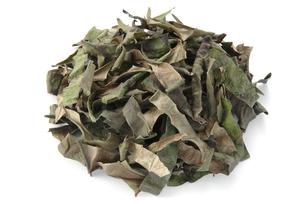 ツワブキ茶の写真素材 [FYI02075725]