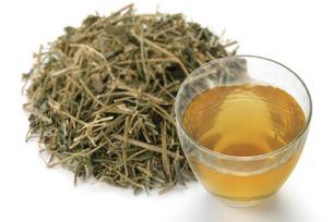 アマチャヅル茶の写真素材 [FYI02075774]
