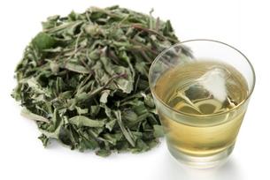 タンポポ茶の写真素材 [FYI02075936]