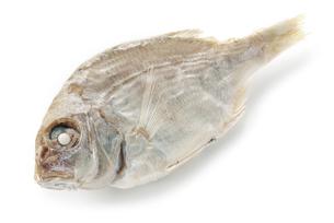 鯛煮干しの写真素材 [FYI02075962]