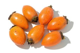 筆柿(フデガキ)の写真素材 [FYI02076022]