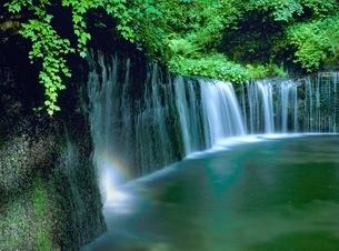 虹かかる白糸の滝の写真素材 [FYI02076150]