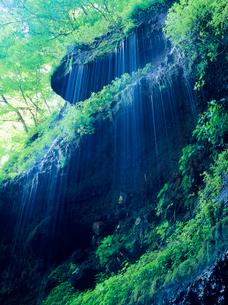 湯川渓谷の岩清水と緑の写真素材 [FYI02076158]