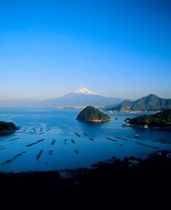 発端丈山より駿河湾と富士山の写真素材 [FYI02076192]