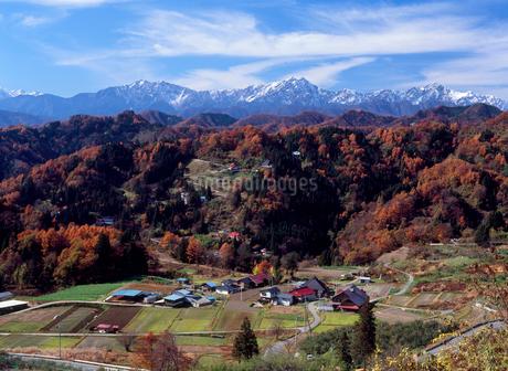 小川村成就から望む紅葉と北アルプス・鹿島槍ヶ岳などの写真素材 [FYI02076203]