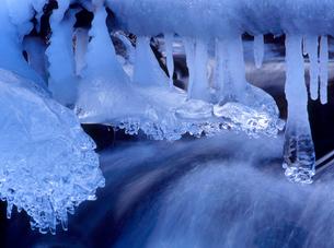 乗鞍高原 一ノ瀬園地の小川と氷柱の写真素材 [FYI02076509]