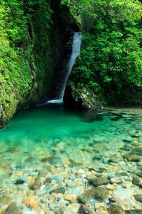 清流と新緑 厳立峡(がんだてきょう)あかがねとよの写真素材 [FYI02076586]