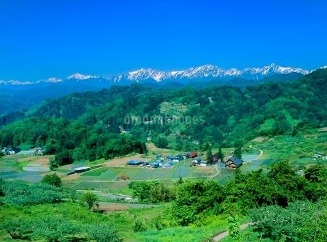 成就 新緑の山里と北アルプスの写真素材 [FYI02076609]