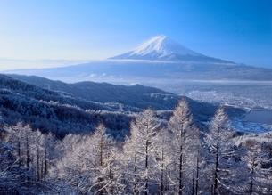 西川新倉林道の雪景色と富士山の写真素材 [FYI02076687]