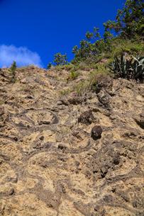 小笠原諸島父島 小港海岸の枕状溶岩の写真素材 [FYI02076702]