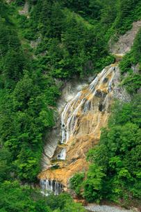姥ヶ滝の新緑の写真素材 [FYI02076734]