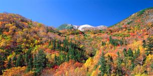 位ヶ原山荘付近から見る紅葉と剣ヶ峰の写真素材 [FYI02076841]