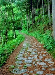 奈良井宿 旧中山道石畳 の写真素材 [FYI02076851]