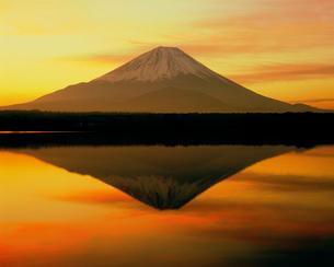 朝焼けの精進湖と富士山の写真素材 [FYI02077020]