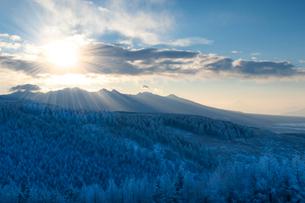 霧ヶ峰高原 霧氷と八ケ岳、朝日の写真素材 [FYI02077042]
