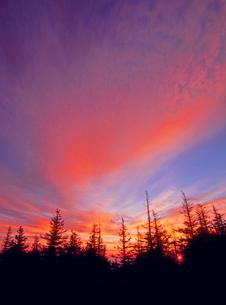 美ヶ原高原 思い出の丘から見る朝焼けと朝日の写真素材 [FYI02077173]