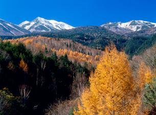 紅葉の乗鞍高原より乗鞍岳を望むの写真素材 [FYI02077749]