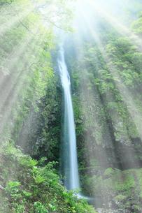 阿弥陀ヶ滝と光芒の写真素材 [FYI02078049]