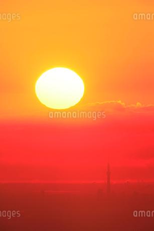 朝日が昇る東京スカイツリーと都心(遠望)の写真素材 [FYI02078300]