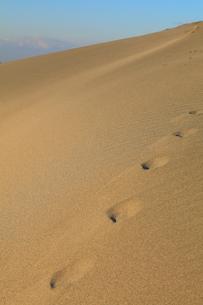 砂丘と足跡の写真素材 [FYI02078466]