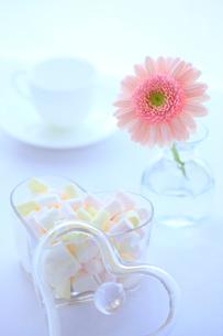 マシュマロとガーベラ コヒーカップの写真素材 [FYI02078496]