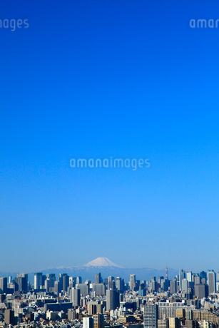 東京都心のビル群と富士山の写真素材 [FYI02078508]