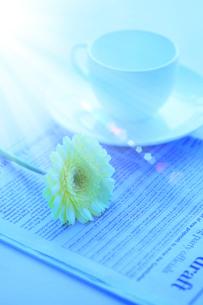 ガーベラとコーヒーカップ 新聞 光の写真素材 [FYI02078527]