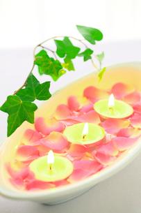ミニバラの花びらとキャンドル アイビーの写真素材 [FYI02078650]