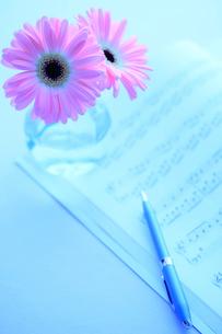 楽譜とガーベラ ペンの写真素材 [FYI02078851]